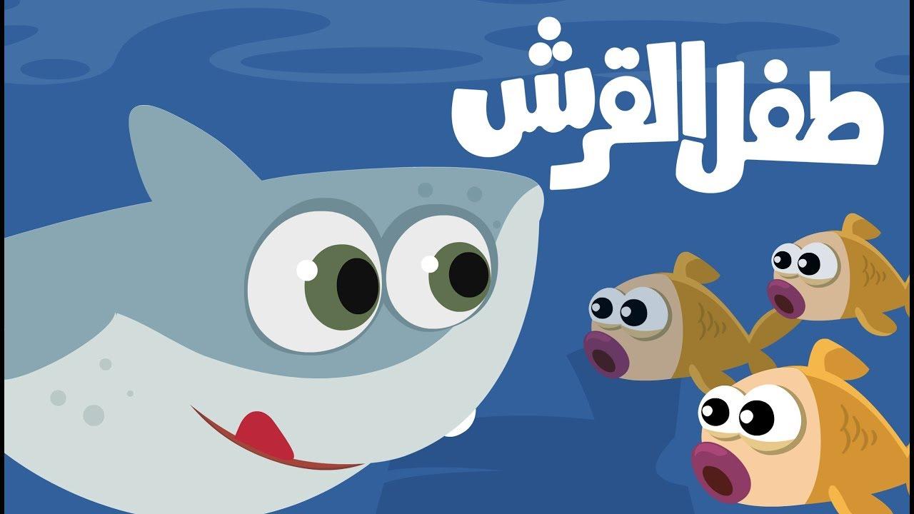 اغنية طفل القرش بيبي شارك روعة اغاني اطفال قناة جود بيبي Youtube