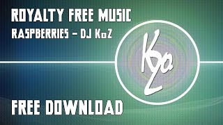 DJ KoZ - RASPberries (Official) HD