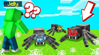 Which SPIDER Is SLOGO?! (Minecraft Guess Who)