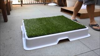 Urban Potty - The Best Designed Dog Potty For The Urban Dog Owner