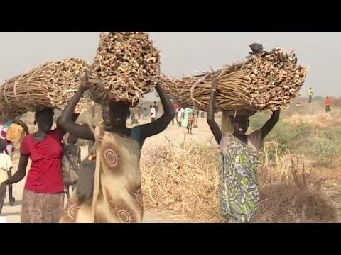 Sudanese Sex-Video