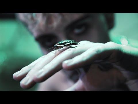 Youtube: eden 𝖉𝖎𝖑𝖑𝖎𝖓𝖌𝖊𝖗 – CHEMISE HAWAÏENNE (Prod. Piège)