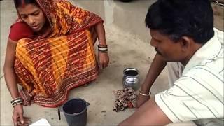 Chilli Seed Treatment
