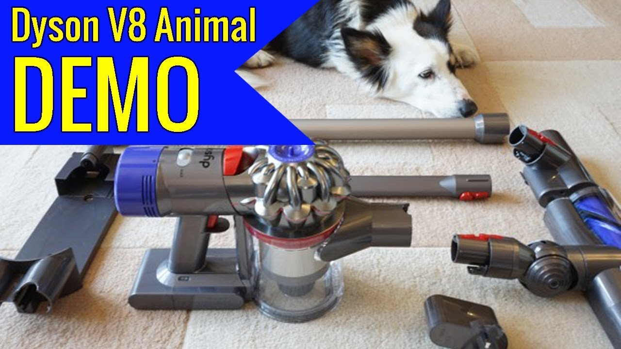 Dyson V8 Animal Cordless Stick Vacuum Cleaner Iron review - YouTube