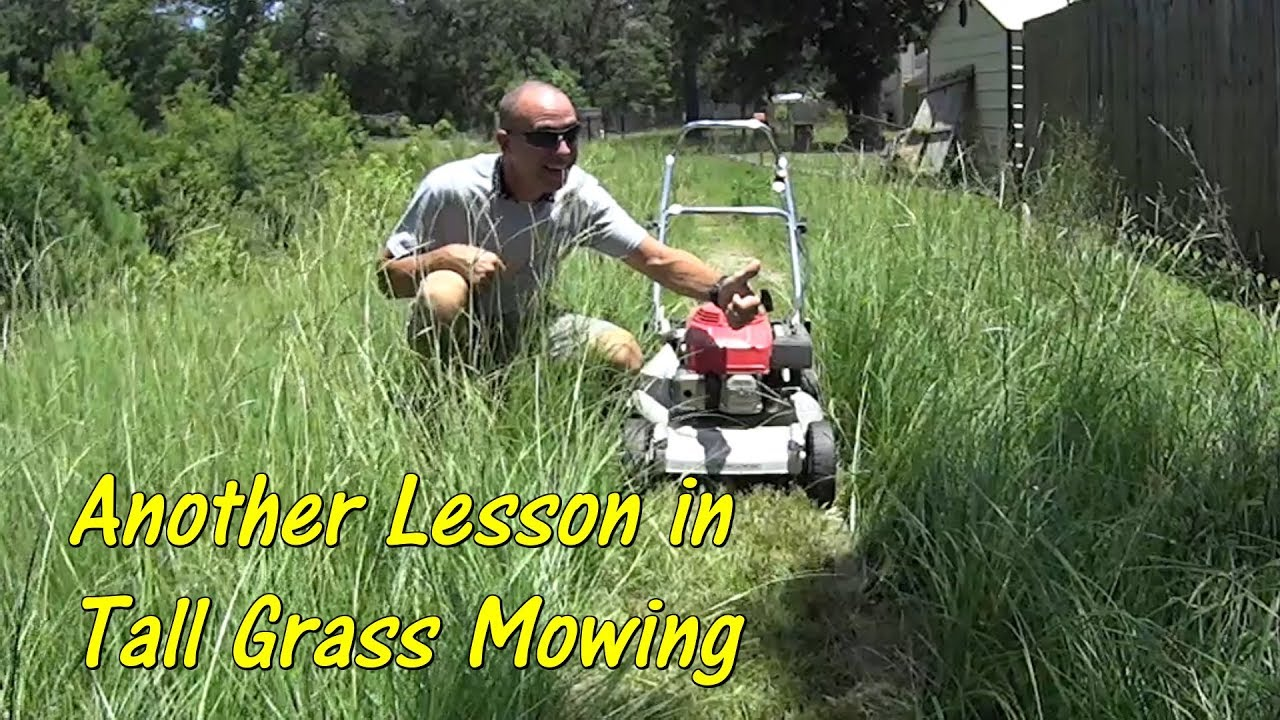 Pt 2 How To Cut Tall Gr With A Basic Lawn Mower Mowing