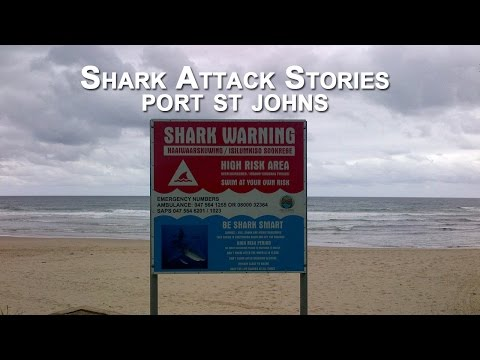 LIFEGUARDS ATTACKED BY SHARKS ON SOUTH AFRICAN BEACH