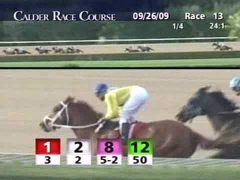 CALDER RACE COURSE, 2009-09-26, Race 13