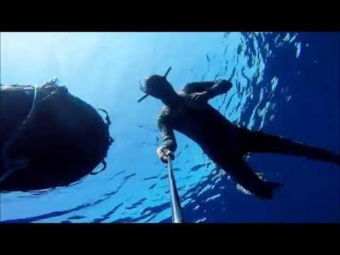 20 meters freedive