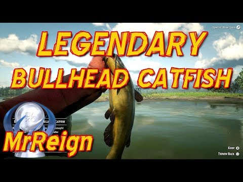 Red Dead Redemption 2 - Hunting the Legendary Bullhead Catfish - Legendary Fish Location and Tactics