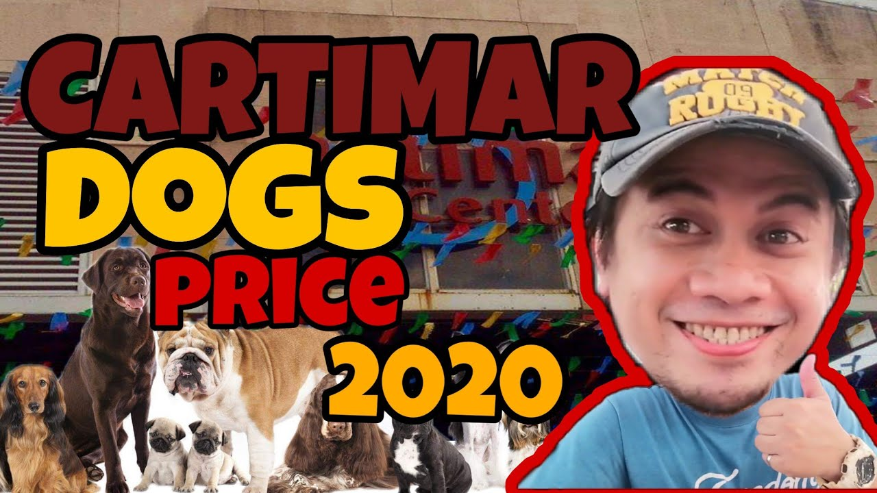 Cartimar Petshop    Updated Dog Price    June 2020   price list    cartimar pet center dogs