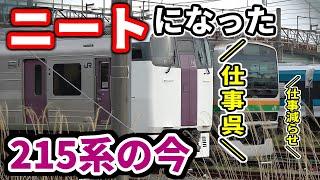 """【本当の""""ニートレイン""""】定期運用を失くした215系の今"""