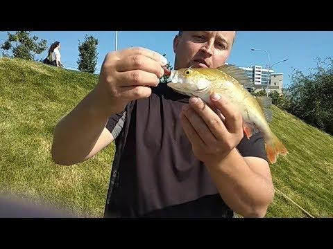Рыбалка в Казани. Ловля окуня на озере Кабан. На микро-джиг