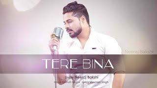 TERE BINA I BEST ROMANTIC SONG OF 2017 I TEASER FULL HD