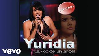 Yuridia - Si No Te Hubieras Ido (Cover Audio)