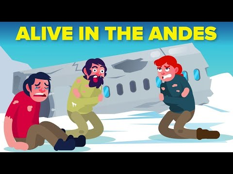 Crazy Plane Crash Leads To Insane Survival Story
