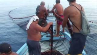 Pesca al capone Roccalumera (Pescari sicileni la lucru)