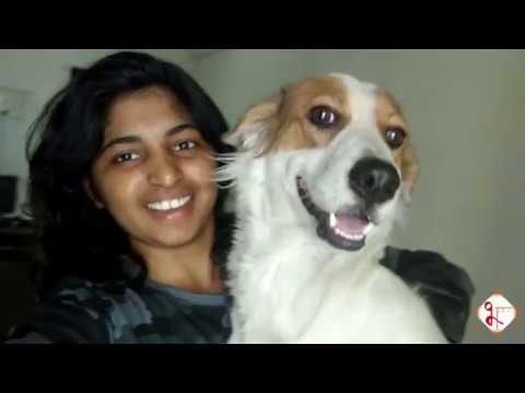 Shivneri Fort 2018| Shivjayanti || Marathi  vlogs | Junnar | Part -1