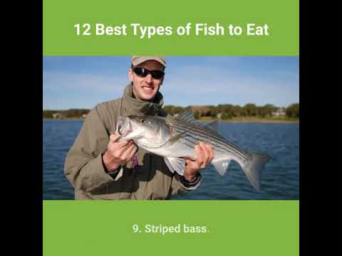 12 Best Types Of Fish To Eat-Good Foods