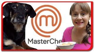 Master Chef pentru TOBY  Pregatim mancare pentru caine la Bogdan`s Show