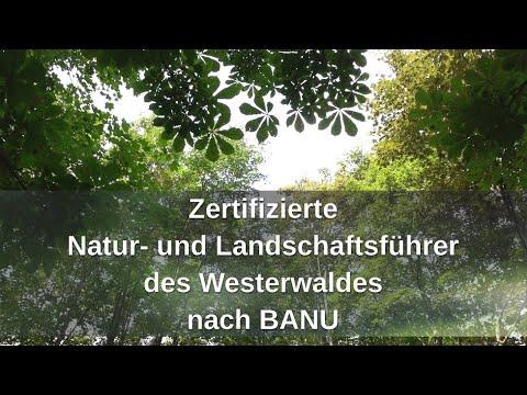 zertifizierte-natur--und-landschaftsführer-westerwald-(banu)