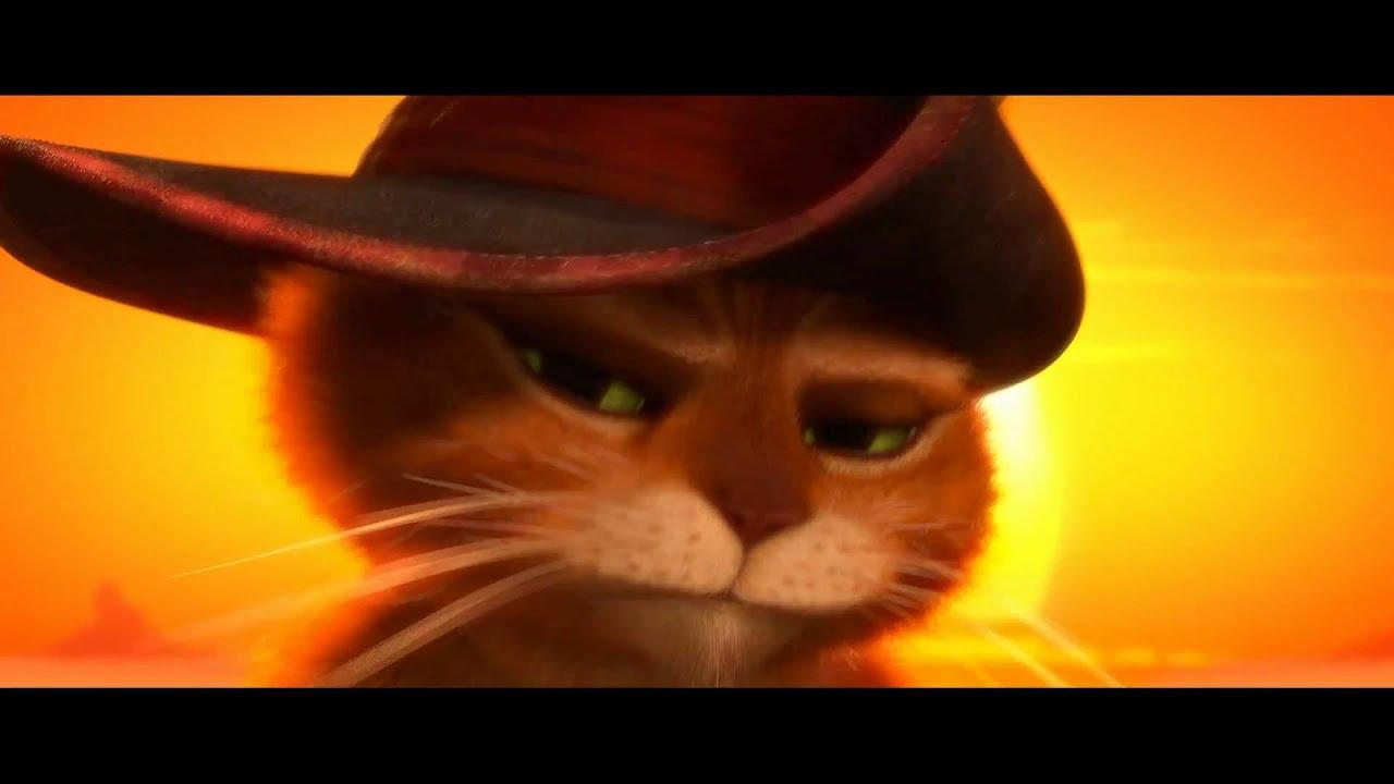 Las 13 mejores películas para amantes de los gatos