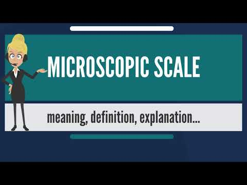 What is MICROSCOPIC SCALE? What does MICROSCOPIC SCALE mean? MICROSCOPIC SCALE meaning