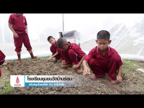 CPG_โรงเรียนชุมชนวัดบ้านร่อม จ.อยุธยา_010917