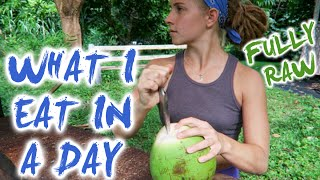 What I Eat In A Day || FULLY RAW!