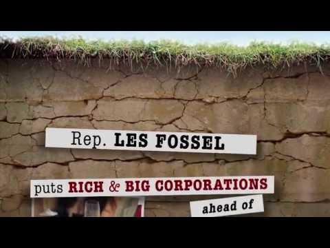 Les Fossel for State Senator?