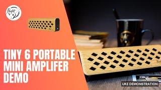 Flight Tiny6 Amplifier