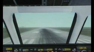Scandinavian Airlines SAS - Landing at Leipzig-Halle [FSX]