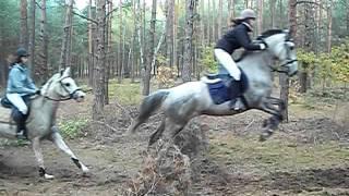 hubertus'11 - Bogucin (skok w terenie)