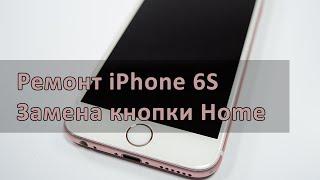 Не работает кнопка Home на iPhone 6s