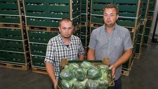 Grupa producencka DAUKUS z woj. kujawsko-pomorskiego