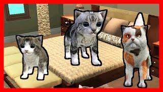 СИМУЛЯТОР Маленького КОТЕНКА #27 КУПИЛИ МЕБЕЛЬ кошка ИГРАЕТ с КОТЯТЯМИ ДЕТСКИЕ ИГРЫ