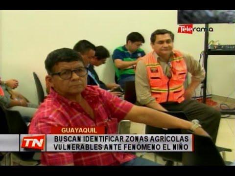 Buscan identificar zonas agrícolas vulnerables ante fenómeno El Niño
