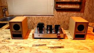 DIY Vacuum Tube Amp & BookSelf…