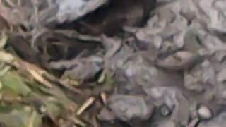 19.10.2019 ремонт водопровід ЗАПЛАТИВ робітникам ЗВУК