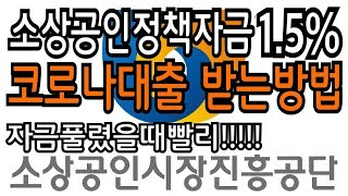 긴급!!! 1.5% 소상공인진흥공단 코로나대출 받는법