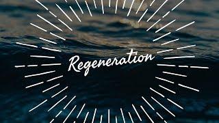 John MacArthur - Regeneration (Sermon Jam)