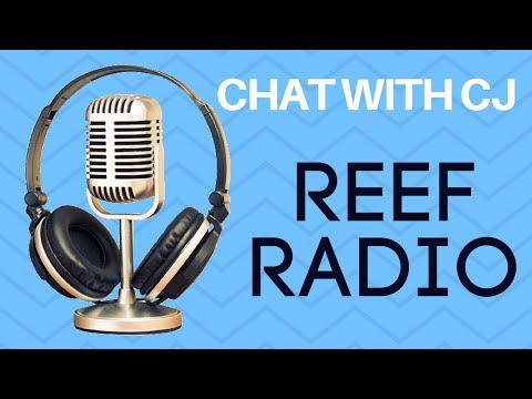 Chat with CJ's Aquariums | Rotter Tube Reef | Reef Radio