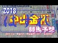 【競馬予想】 2018 中山金杯 「1年の計は、金杯にあり!!!」