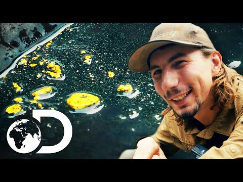 Parker Is Amazed By Some Of The Richest Ground He's Ever Seen | Gold Rush: Parker's Trail