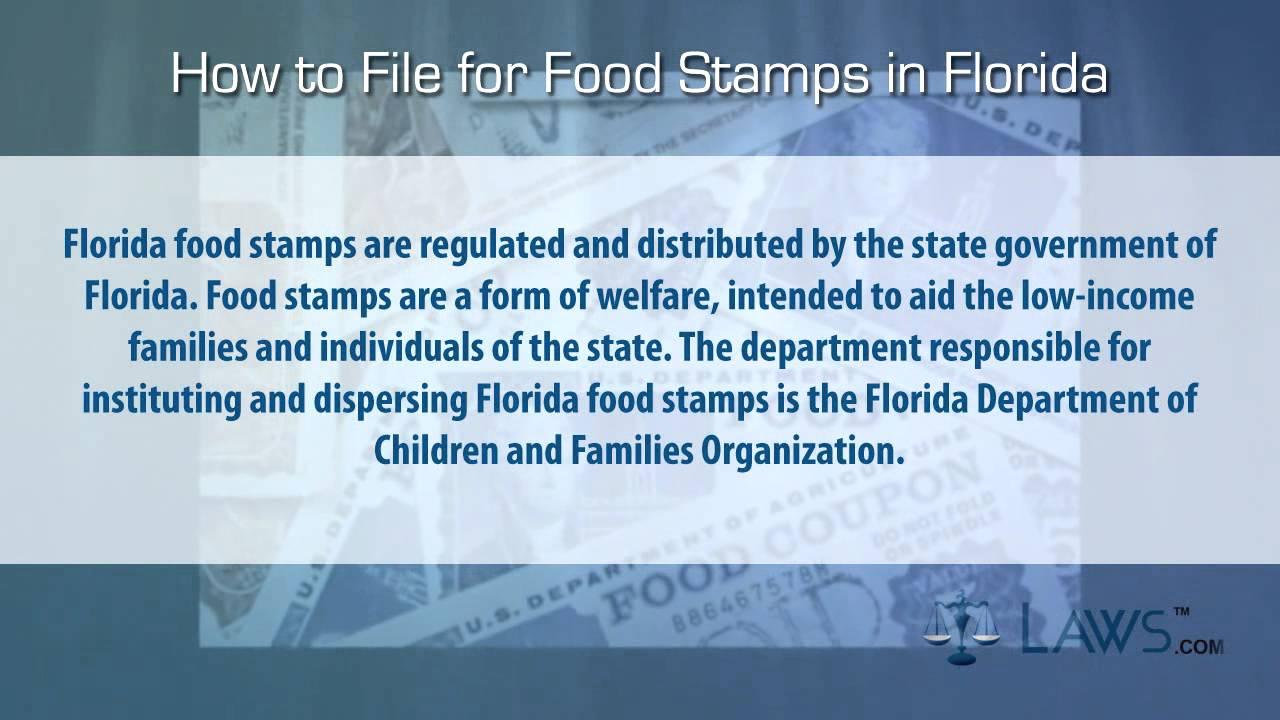 Tampa Florida Food Stamps Number