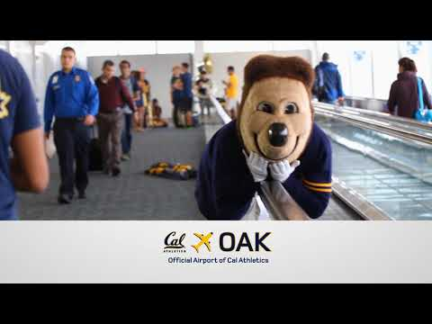 Oskie Flies OAK! OAK the Official Airport of Cal Athletics!