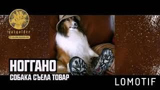 T-Fest-Баста собака съела товар песня опубликована от DITULVAUT, (Lomotif)