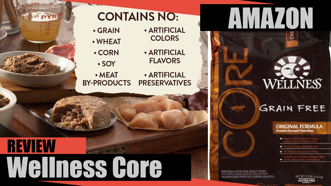 Wellness Core Dry Dog Food Review