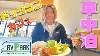 電源、ゴミ処理代込みで1泊1500円!?お得すぎる広大なドッグランのあるRVパークでカフェを楽しむ車中泊!