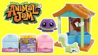 Animal Jam Series 2 Pet Wash Hut Treasure Chest