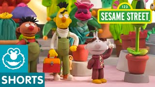 Sesame Street: Bert And Ernie's Great Adventures—Flower Shop